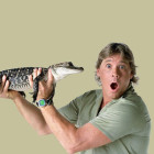 Steve Irwin Crocodile Hunter