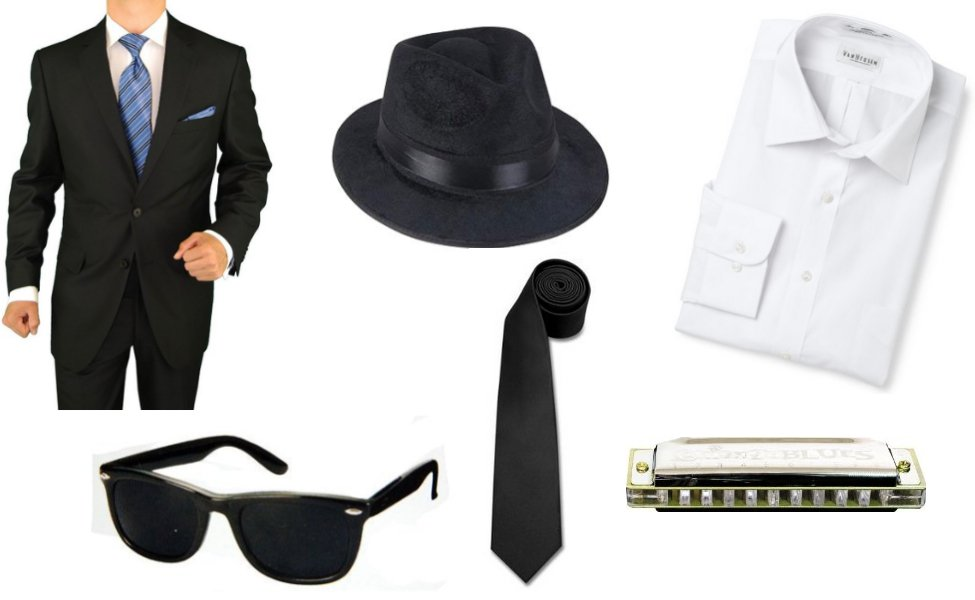 The Blues Brothers Costume  sc 1 st  Carbon Costume & The Blues Brothers Costume | DIY Guides for Cosplay u0026 Halloween