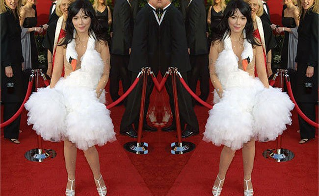 Bjork swan dress costume buy