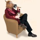 Horse Head Man
