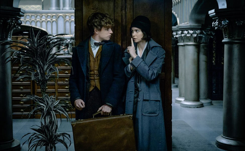 Newt and Tina in Fantastic Beasts and Where to Find Them
