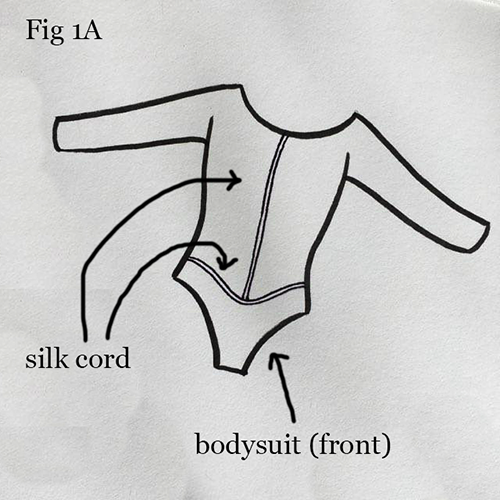 Fig 1a. Bodysuit