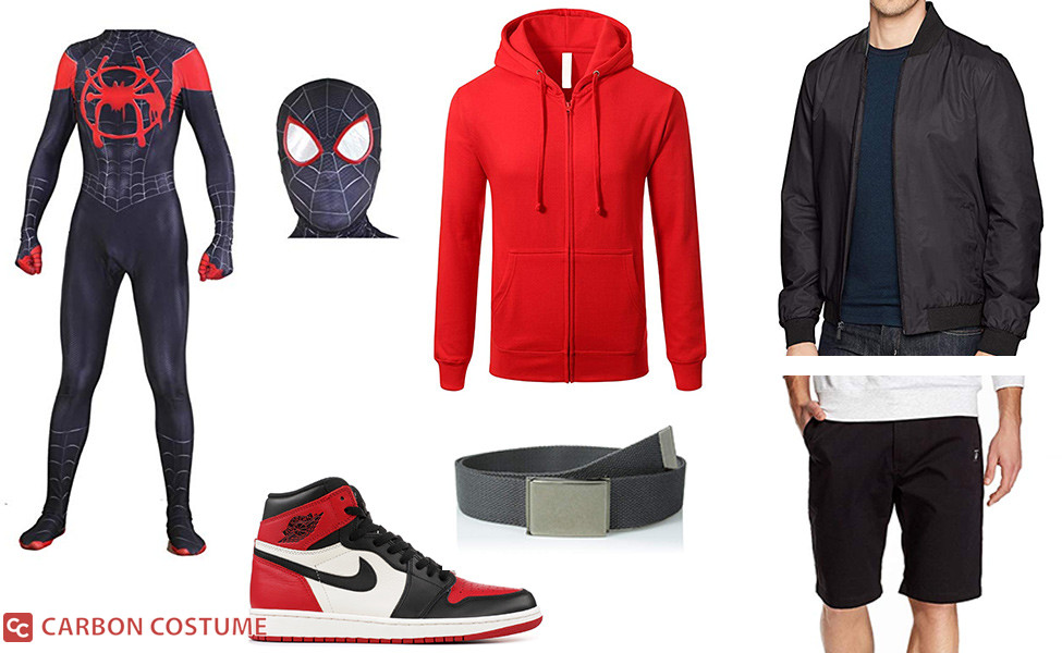 Spider-Man (Miles Morales) from Into the Spider-Verse Costume